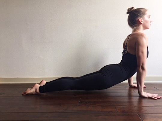 Urdhva Mukha Svanasana Correct Alignment